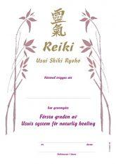 reiki_I